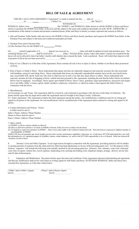 Free California Horse Bill of Sale Agreement Template PDF – Bill of Sale Contract Template