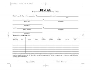 Livestock Bill of Sale Form